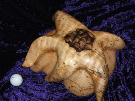 Spalted Maple Sea Star